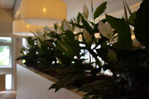 Interieurontwerp – Ontmoetingsruimte seniorencomplex Urmond